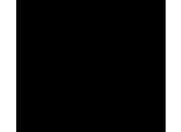 icon-kratzer Kopie