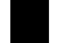 icon-zertifikat Kopie